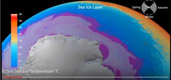 """南極周辺の冷水の流れが強力なスーパーコンピュータ """"雷神""""で解析された"""